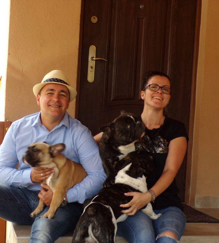 amerikai és francia bulldog kennel